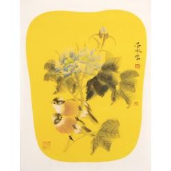 Hibiscus - CNAG000773