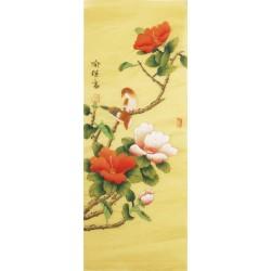 Hibiscus - CNAG000775