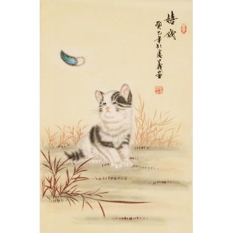 Cats - CNAG000809