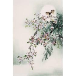 Peach Blossom - CNAG000833
