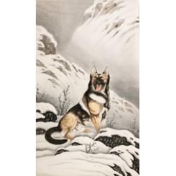 Wolf - CNAG000086