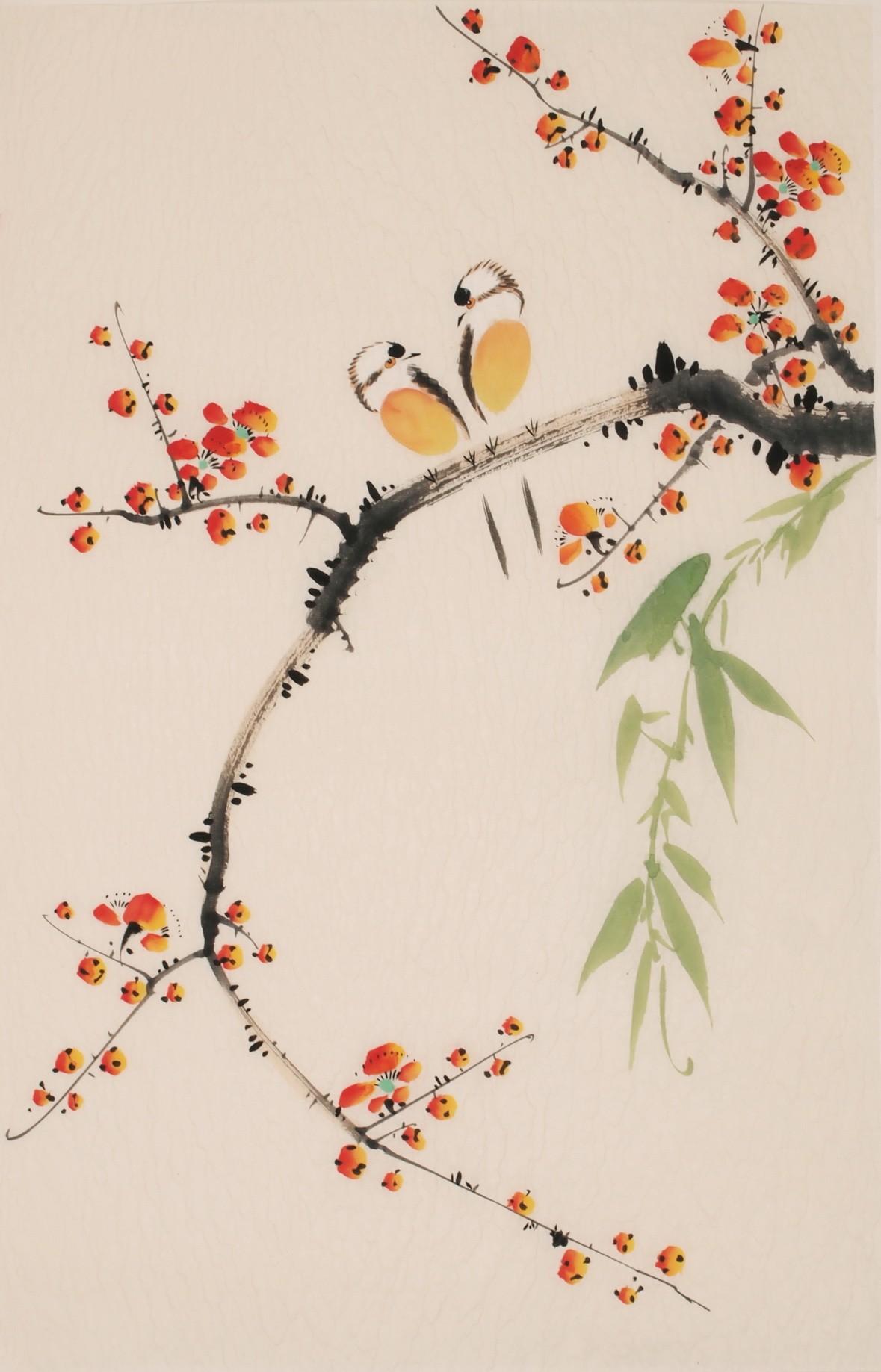 Bamboo - CNAG000881