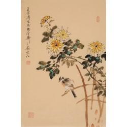 Chrysanthemum - CNAG000904