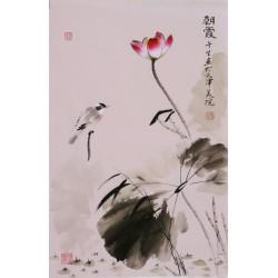 Lotus - CNAG000910