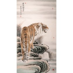 Tiger - CNAG000093