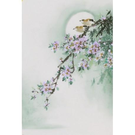 Peach Blossom - CNAG000955