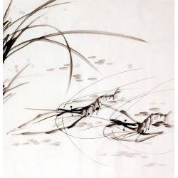 Chinese Shrimp Painting - CNAG009914